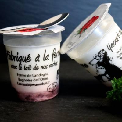 Yaourt aux myrtilles x4